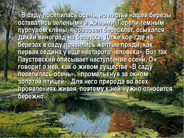 «В саду поселилась осень, но листья нашей березы оставались зелеными и живым...