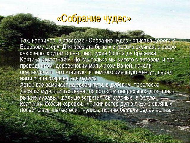 Так, например, в рассказе «Собрание чудес» описана дорога к Боровому озеру....