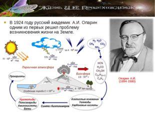 В 1924 году русский академик А.И. Опарин одним из первых решил проблему возни