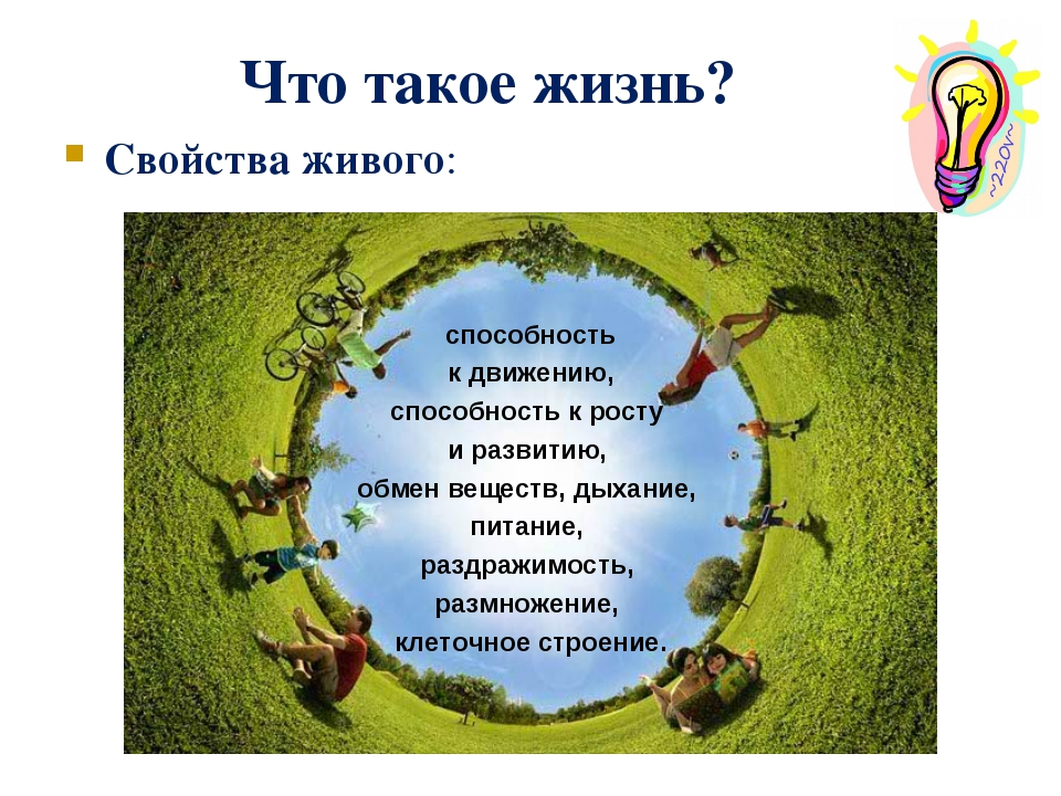 Что такое жизнь? Свойства живого: способность к движению, способность к росту...