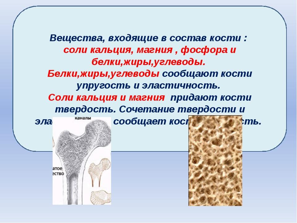 Вещества, входящие в состав кости : соли кальция, магния , фосфора и белки,жи...