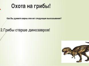 Охота на грибы! 2.Грибы старше динозавров! Как Вы думаете верны или нет следу