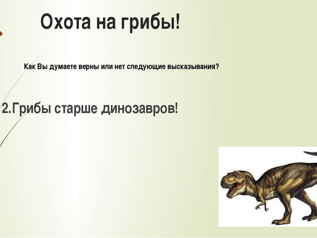 Охота на грибы! 2.Грибы старше динозавров! Как Вы думаете верны или нет следу...