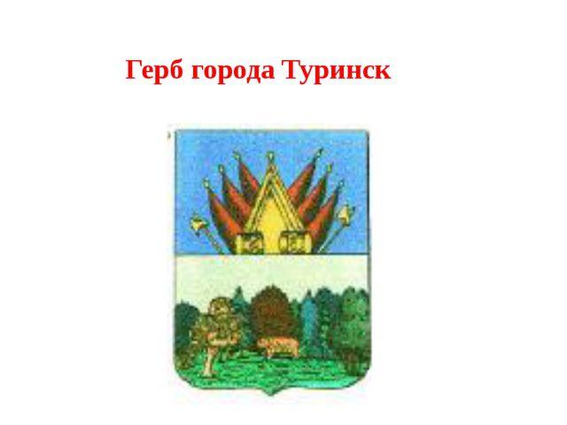 Герб города Туринск