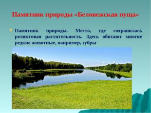 Памятник природы «Беловежская пуща» Памятник природы. Место, где сохранилась