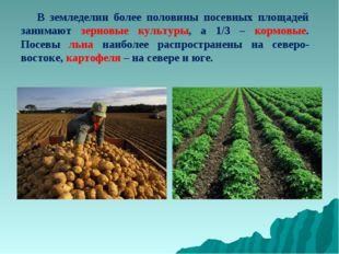 В земледелии более половины посевных площадей занимают зерновые культуры, а