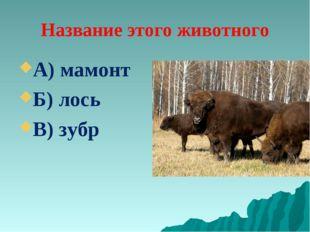 Название этого животного А) мамонт Б) лось В) зубр