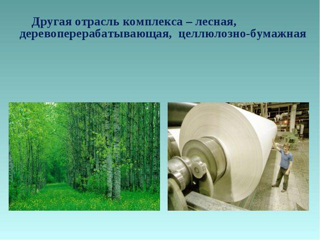 Другая отрасль комплекса – лесная, деревоперерабатывающая, целлюлозно-бумажная