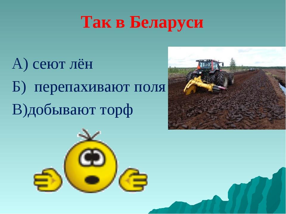 Так в Беларуси А) сеют лён Б) перепахивают поля В)добывают торф