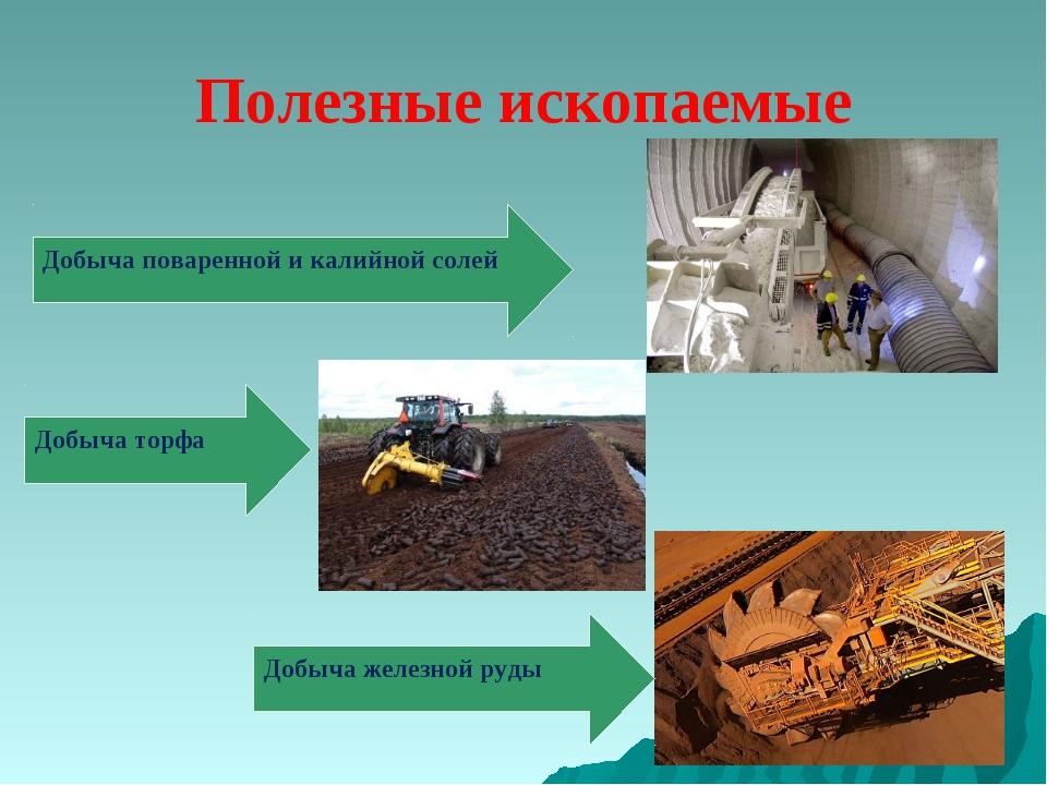 Полезные ископаемые Добыча поваренной и калийной солей Добыча торфа Добыча же...