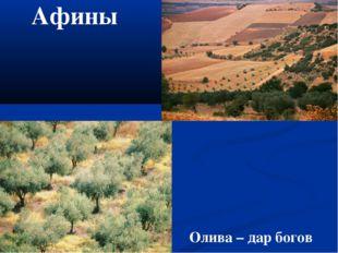 Афины Олива – дар богов