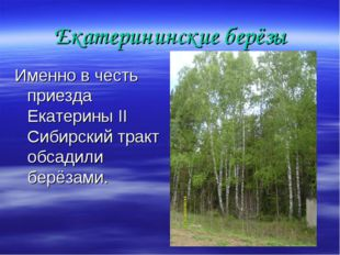 Екатерининские берёзы Именно в честь приезда Екатерины II Сибирский тракт обс