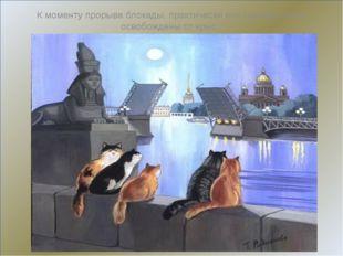 К моменту прорыва блокады, практически все подвалы были освобождены от крыс.