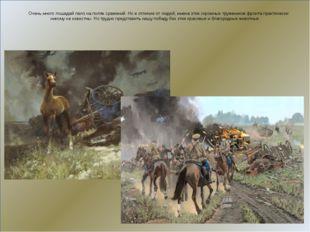 Очень много лошадей пало на полях сражений. Но в отличие от людей, имена эти