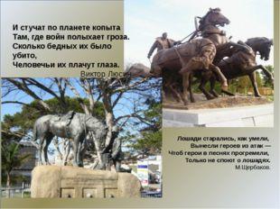 Лошади старались, как умели, Вынесли героев из атак — Чтоб герои в песнях пр