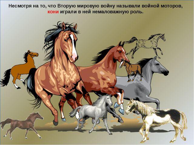 Несмотря на то, что Вторую мировую войну называли войной моторов, кони играл...