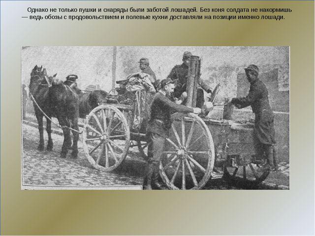 Однако не только пушки и снаряды были заботой лошадей. Без коня солдата не н...