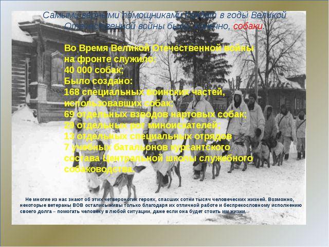 Самыми верными помощниками солдат в годы Великой Отечественной войны были, к...