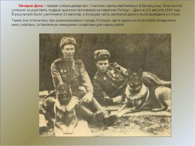 Овчарка Дина– первая собака-диверсант. Участник «рельсовой войны» в Белорус...