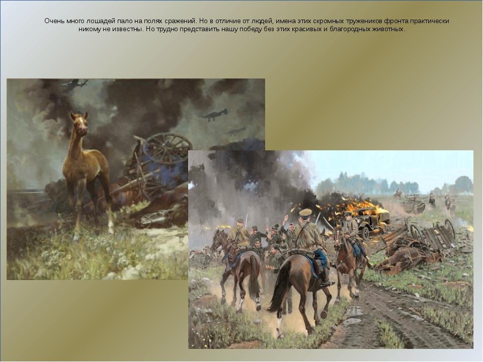 Очень много лошадей пало на полях сражений. Но в отличие от людей, имена эти...