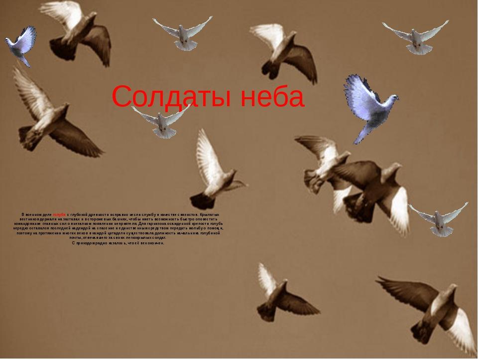 Солдаты неба  В военном деле голуби с глубокой древности исправно несли служ...