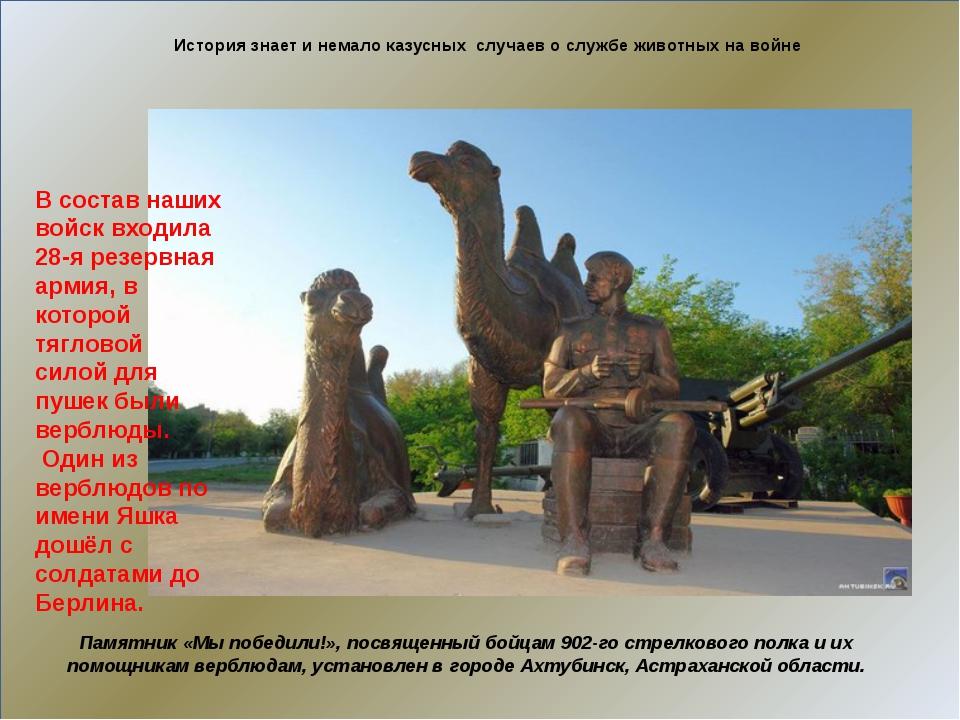 История знает и немало казусных случаев о службе животных на войне Памятник...