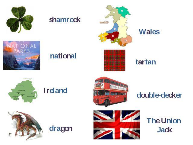 shamrock national Ireland dragon Wales tartan double-decker The Union Jack