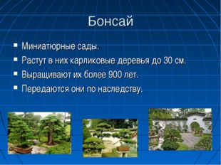 Бонсай Миниатюрные сады. Растут в них карликовые деревья до 30 см. Выращивают