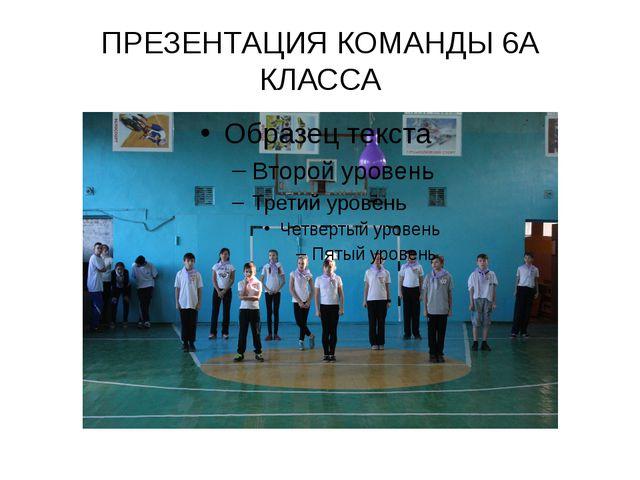 ПРЕЗЕНТАЦИЯ КОМАНДЫ 6А КЛАССА