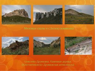 Меловые скалы в с.Белокузьминовка Алексеево-Дружковка. Каменные деревья. (Ко