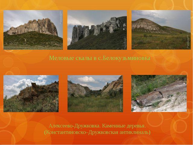 Меловые скалы в с.Белокузьминовка Алексеево-Дружковка. Каменные деревья. (Ко...