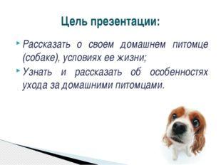 Рассказать о своем домашнем питомце (собаке), условиях ее жизни; Узнать и рас