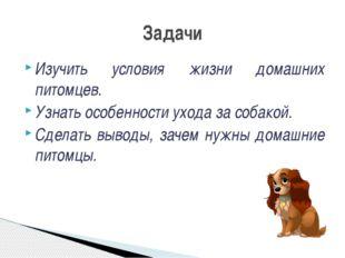 Изучить условия жизни домашних питомцев. Узнать особенности ухода за собакой.