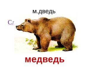 Словарный диктант. медведь м.дведь