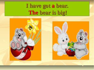 I have got a bear. The bear is big!