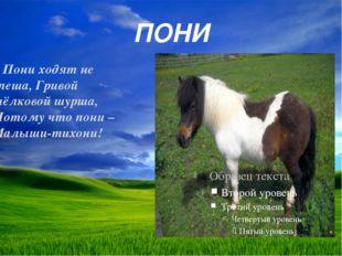 ПОНИ Пониходят не спеша, Гривой шёлковой шурша, Потому что пони – Малыши-тих