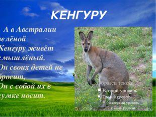 КЕНГУРУ А в Австралии зелёной Кенгуру живёт смышлёный. Он своих детей не брос