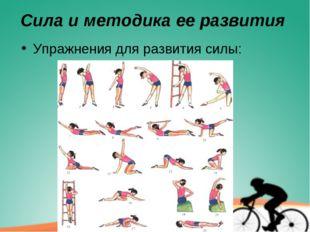 Сила и методика ее развития Упражнения для развития силы: