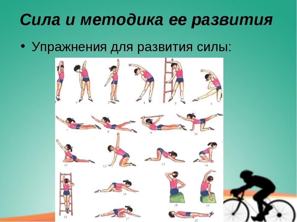 Упражнения для развития силы ног