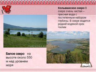 Колыванское озеро В озере очень чистая – пресная вода с постепенным набором