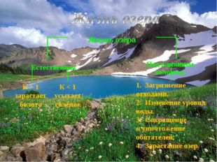 К > 1 зарастает болото 1. Загрязнение отходами. 2. Изменение уровня воды. 3.
