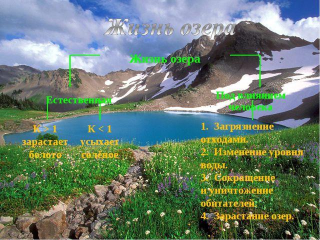 К > 1 зарастает болото 1. Загрязнение отходами. 2. Изменение уровня воды. 3....
