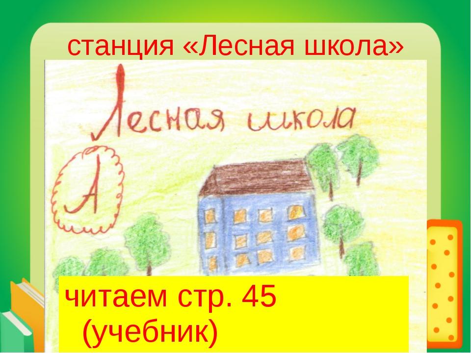читаем стр. 45 (учебник) читаем стр. 45 (учебник)