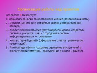 Организация работы над проектом Создается 5 микрогрупп: 1. Социологи (анализ