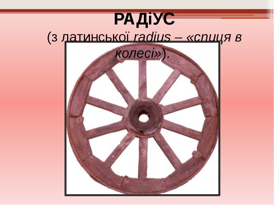 РАДіУС (з латинської radius – «спиця в колесі»).