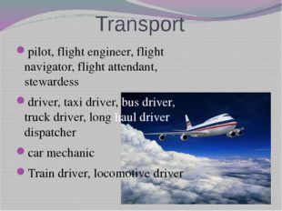 Transport pilot, flight engineer, flight navigator, flight attendant, steward