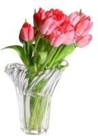 Весенние цветы и букеты для любимых на прозрачном фоне