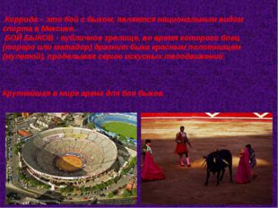 Коррида – это бой с быком, является национальным видом спорта в Мексике. БО