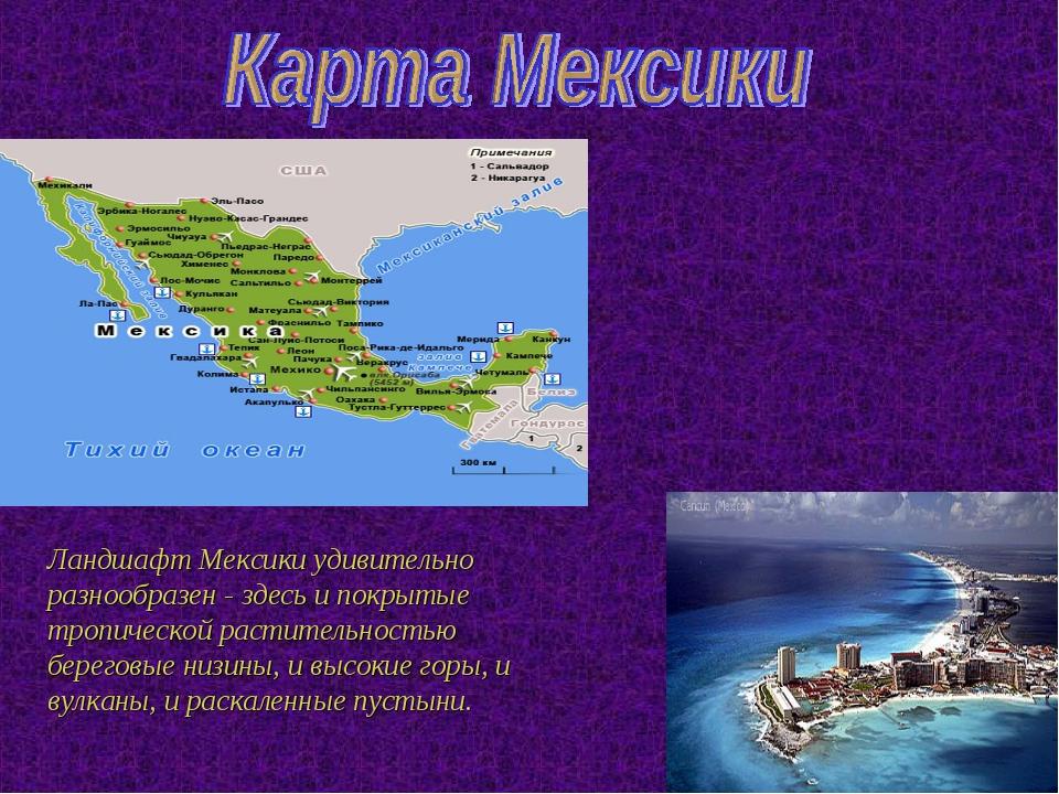 Ландшафт Мексики удивительно разнообразен - здесь и покрытые тропической раст...