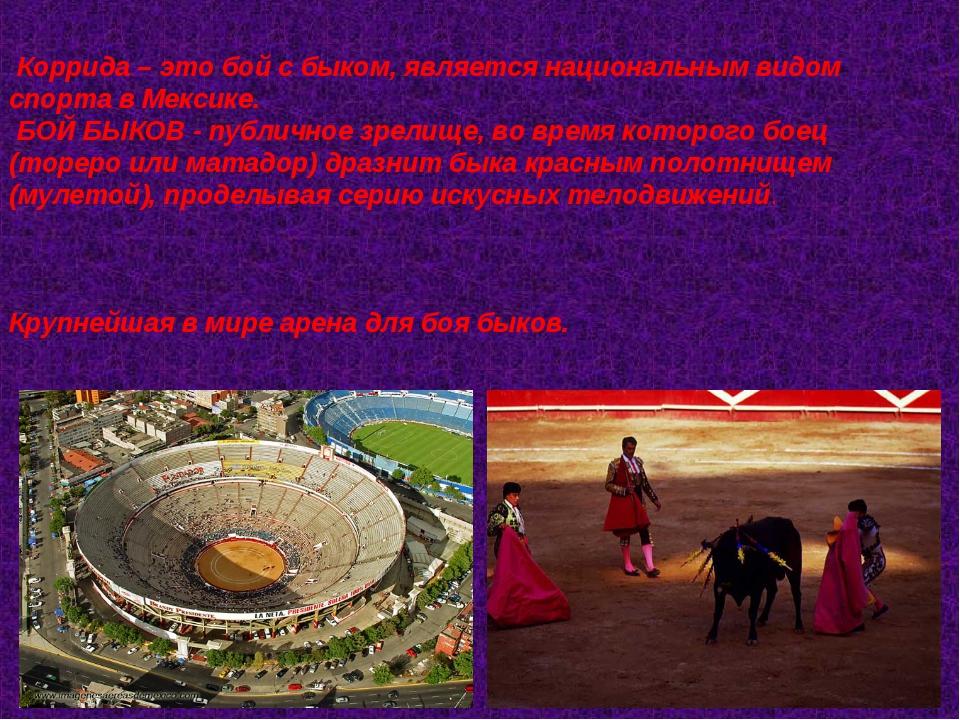 Коррида – это бой с быком, является национальным видом спорта в Мексике. БО...